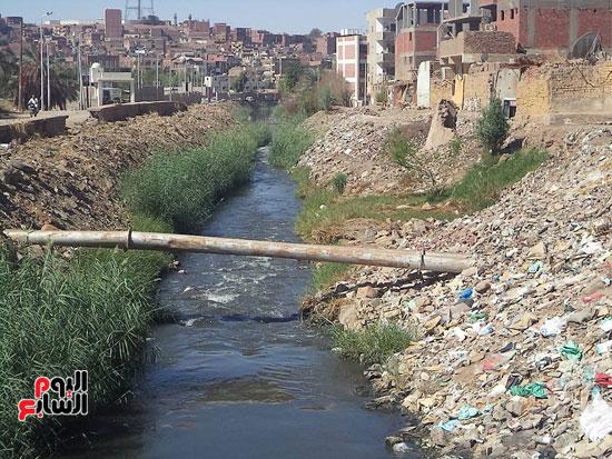 1كارثة بيئية تلوث مياه النيل بأسوان (1)