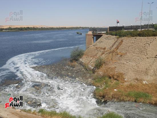 1كارثة بيئية تلوث مياه النيل بأسوان (4)