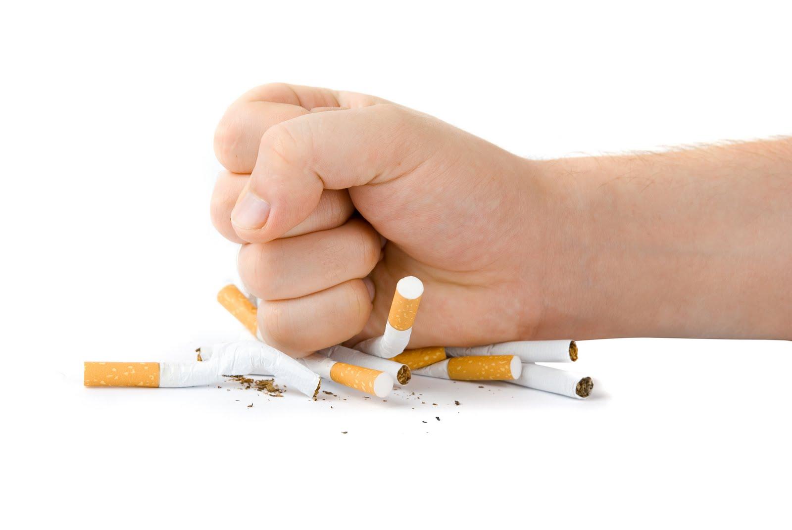 بالفيديو جراف أهم 6 أسئلة تدور فى ذهن المدخن لأول مرة اعرف قبل ما تجرب اليوم السابع