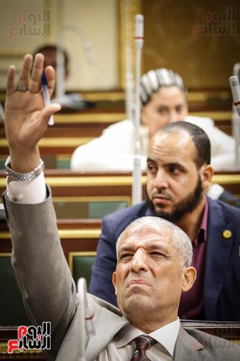 النائب محمد الحسيني يطلب الكلمة