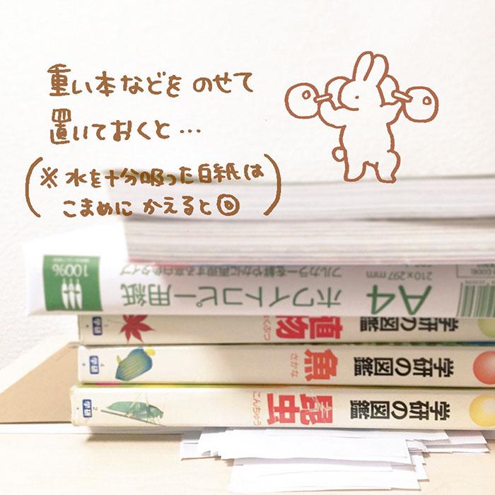 83574-wet-book-pages-fix-haluka-nohana-3