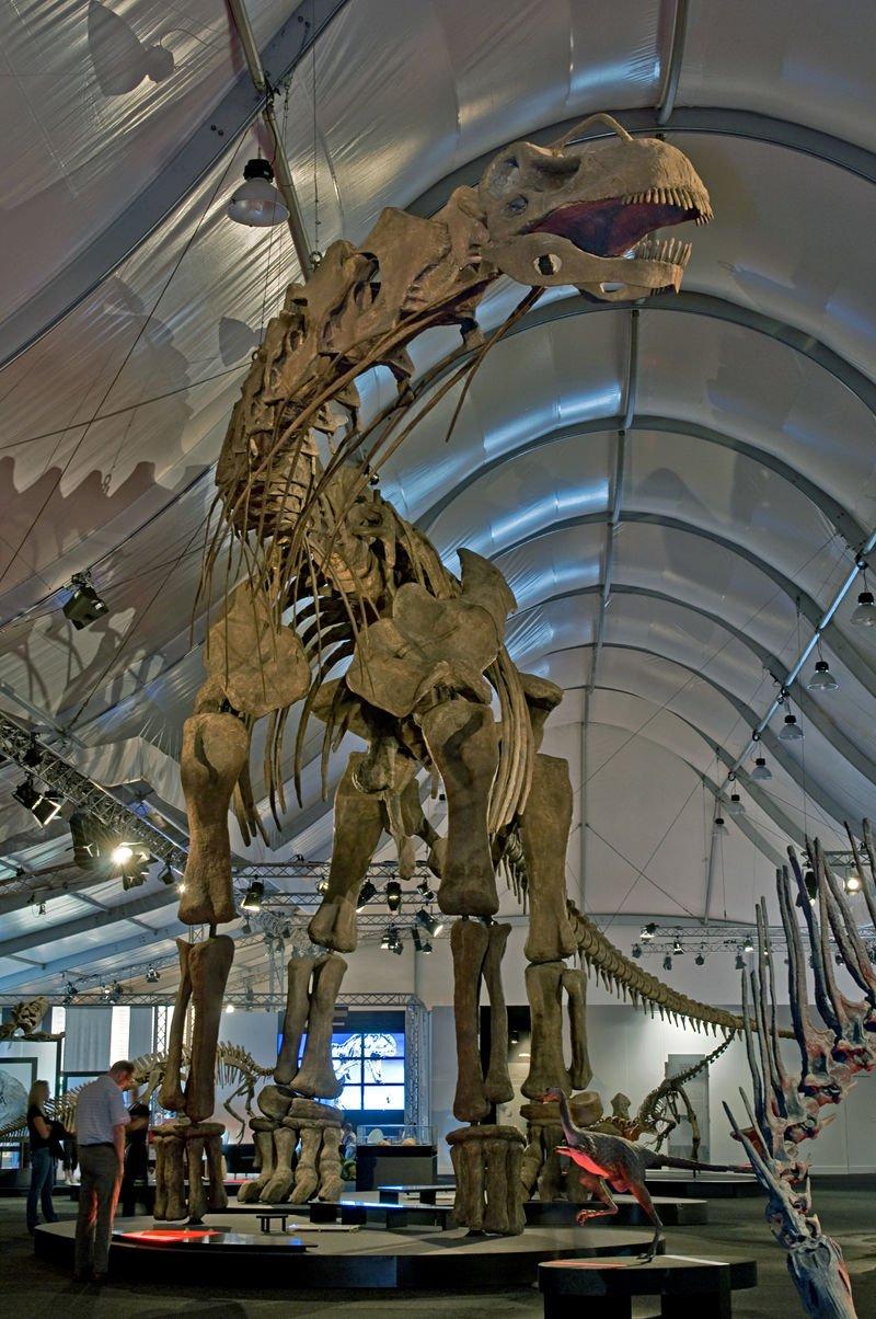 199032-titanosaur.jpg