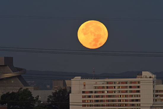 القمر يزين سماء العالم (13)