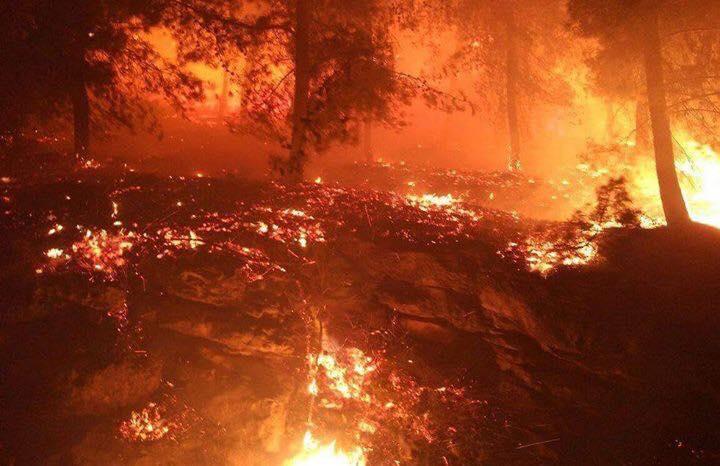 استمرار اشتعال الحرائق ليلا (4)