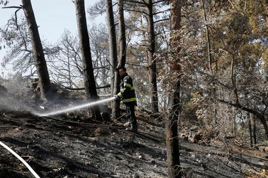 محاولات رجال الإطفاء السيطرة على الحرائق