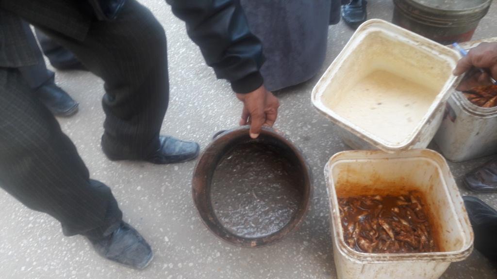 حملات تموينية تضبط 10 كيلو اسمال مملحة ومش بالاقصر