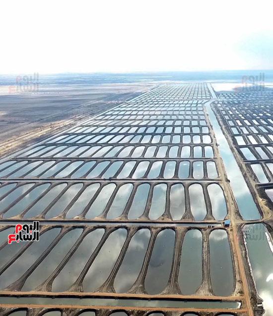 المرحلة الأولى من المشروع  تضم 1029 حوض