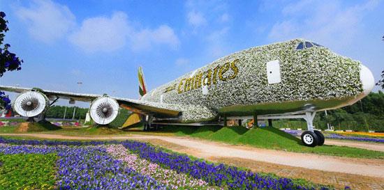 تقدم أكبر مجسم طائرة حقيقى لطيران الإمارات من الزهور