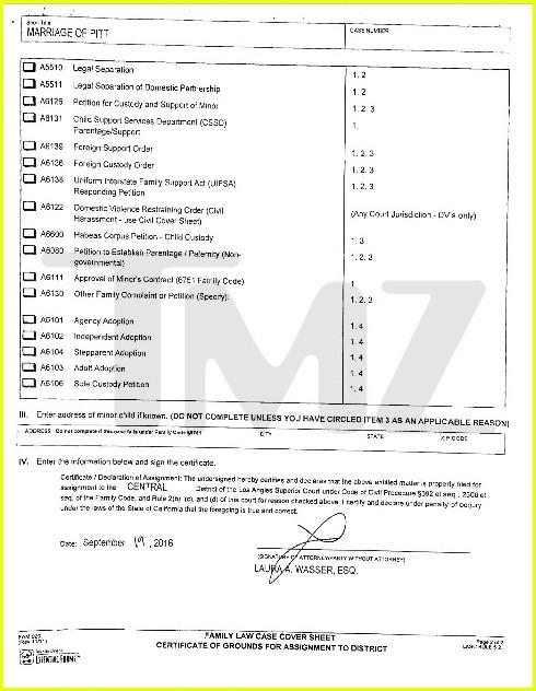 بالصور   ننشر وثائق طلب أنجلينا جولى الطلاق من براد بيت