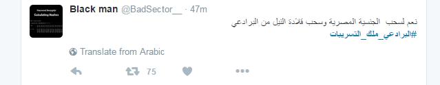 رواد تويتر يطالبون بسحب الجنسية من البرادعى