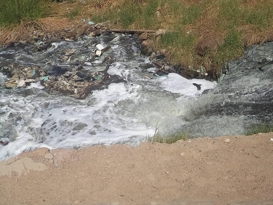 مياه الصرف المتسربة فى النيل