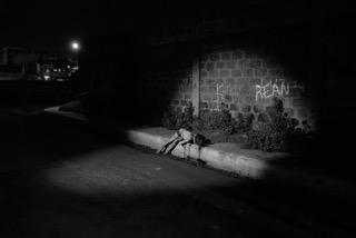 جثة فتاة تدعى ميلانيا أباتا وجدت تحت كوبرى فى كالوكان فى ٢٩ نوفمبر.