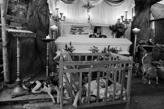 الطفل آفيل ترك وحيدًا مع والدته وأخيه أليكس بعد أن قُتل والده كريستيان نوفابل.