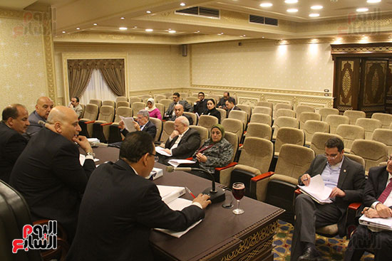 صور لجنة الشئون الاقتصادية بمجلس النواب (9)