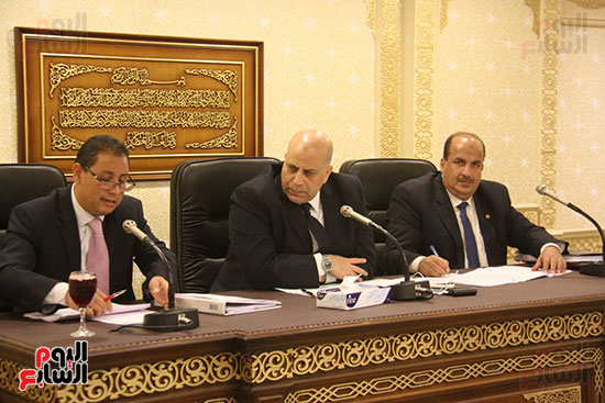 صور لجنة الشئون الاقتصادية بمجلس النواب (11)