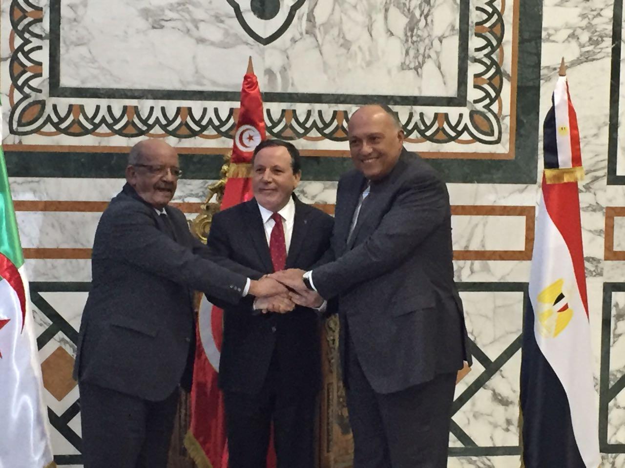 وزراء خارجية مصر وتونس الجزائر