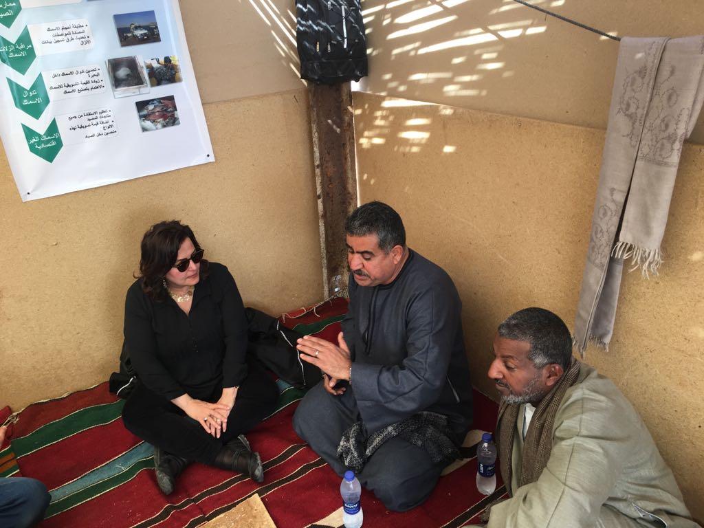 جانب من جولة الدتورة منى محرز نائب وزير الزراعة (4)