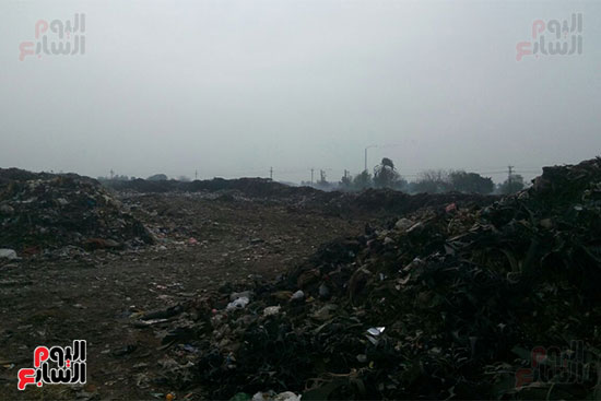 القمامة-تحاصر-مدينة-زفتى-فى-الغربية-(4)