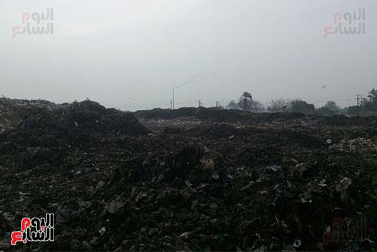 القمامة-تحاصر-مدينة-زفتى-فى-الغربية-(2)