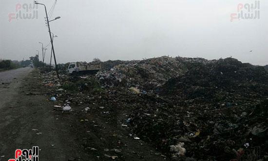 القمامة-تحاصر-مدينة-زفتى-فى-الغربية-(3)