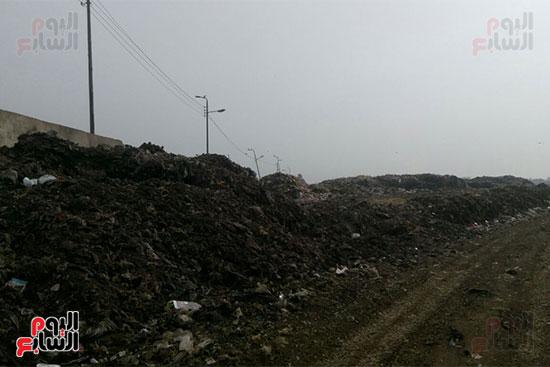 القمامة-تحاصر-مدينة-زفتى-فى-الغربية-(11)