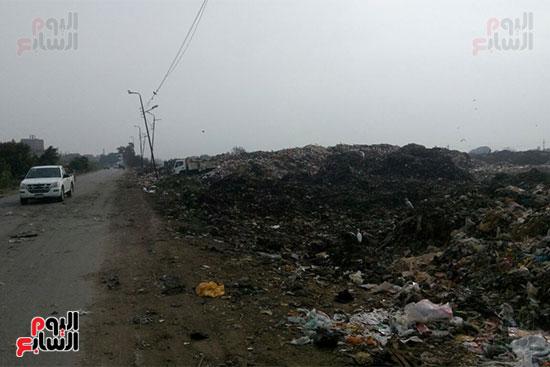 القمامة-تحاصر-مدينة-زفتى-فى-الغربية-(8)