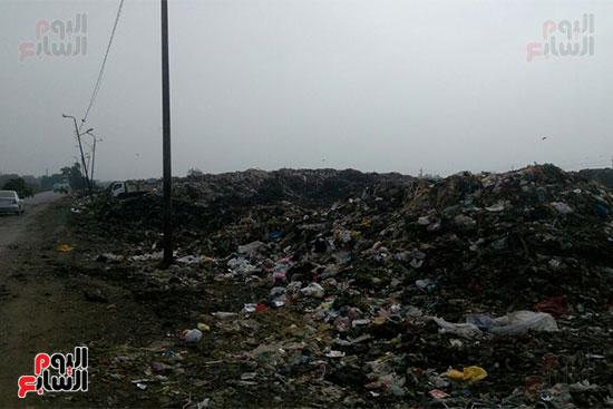 القمامة-تحاصر-مدينة-زفتى-فى-الغربية-(10)