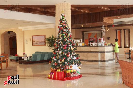 اشجار الكريسماس تنتشر فى فنادق مصر السياحية