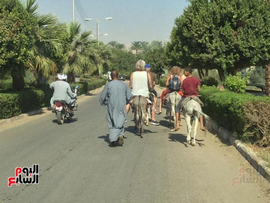 السياح يمتطون الحمير بمحافظة الاقصر