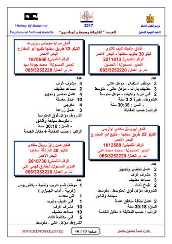 قائمة وزارة القوى العاملة بـ 5342 فرصة عمل حتى نهاية يناير (12)