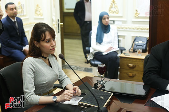 صور لجنة الصناعة  بمجلس النواب (7)