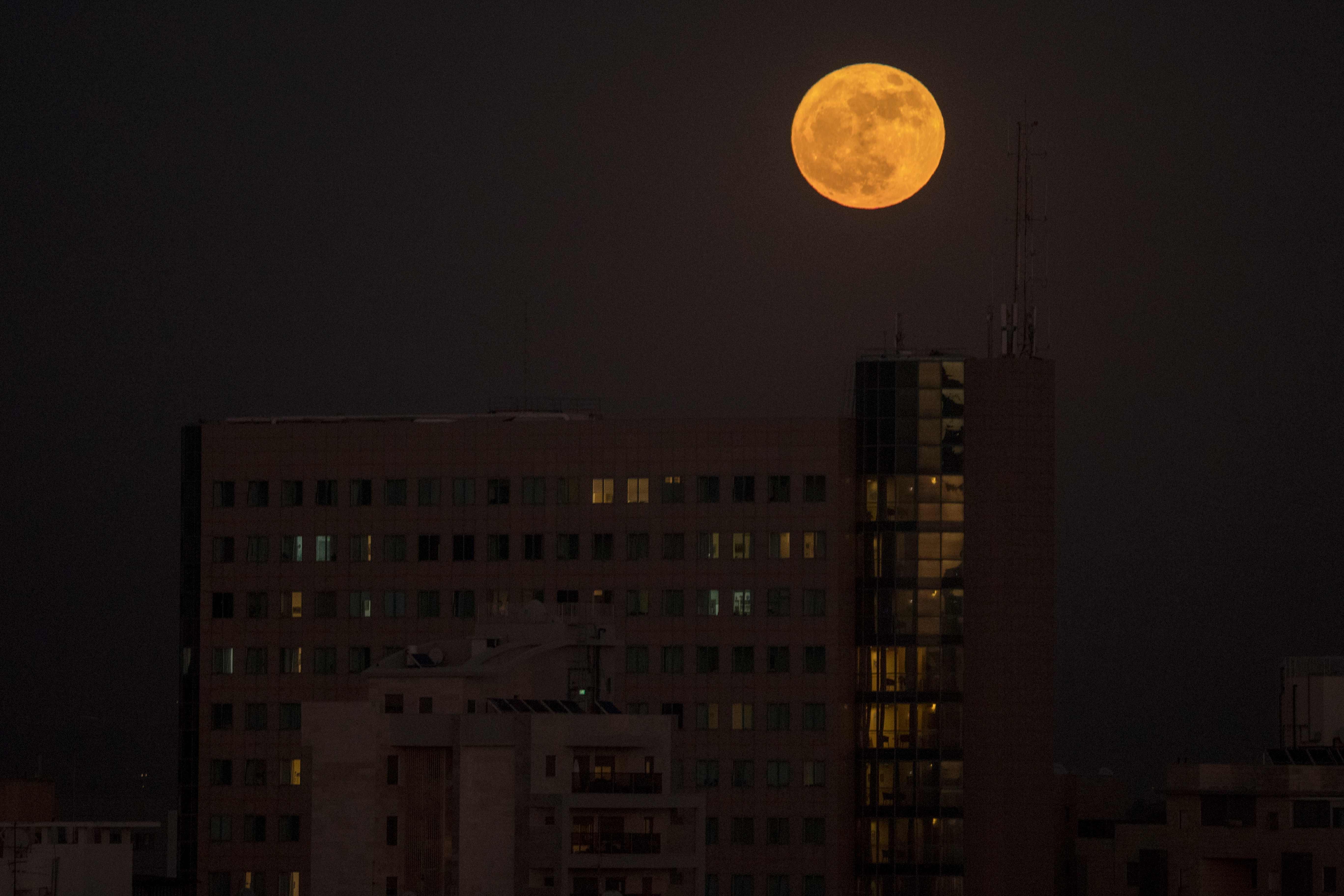 القمر العملاق فى فلسطين