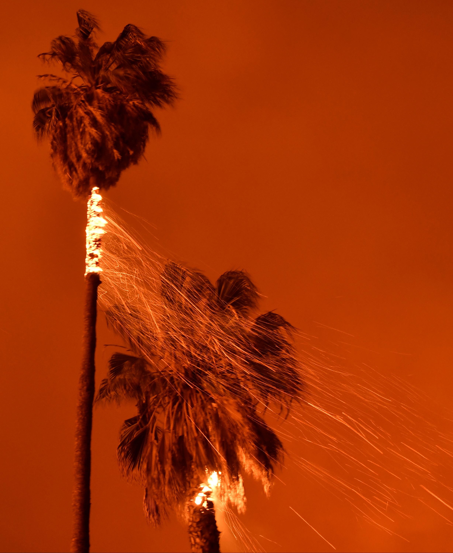 امتدادا الحرائق إلى النخل