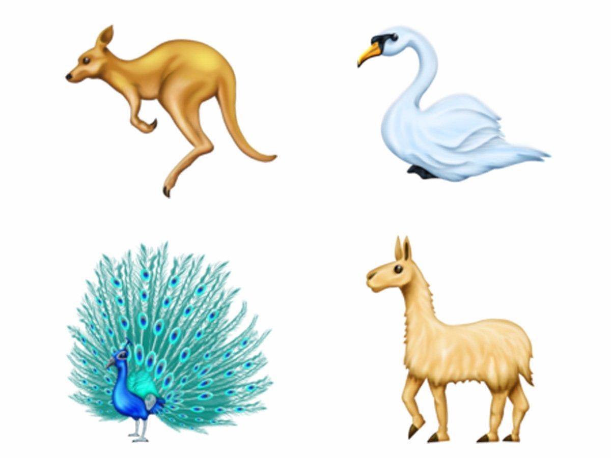 أنواع جديدة من الحيوانات