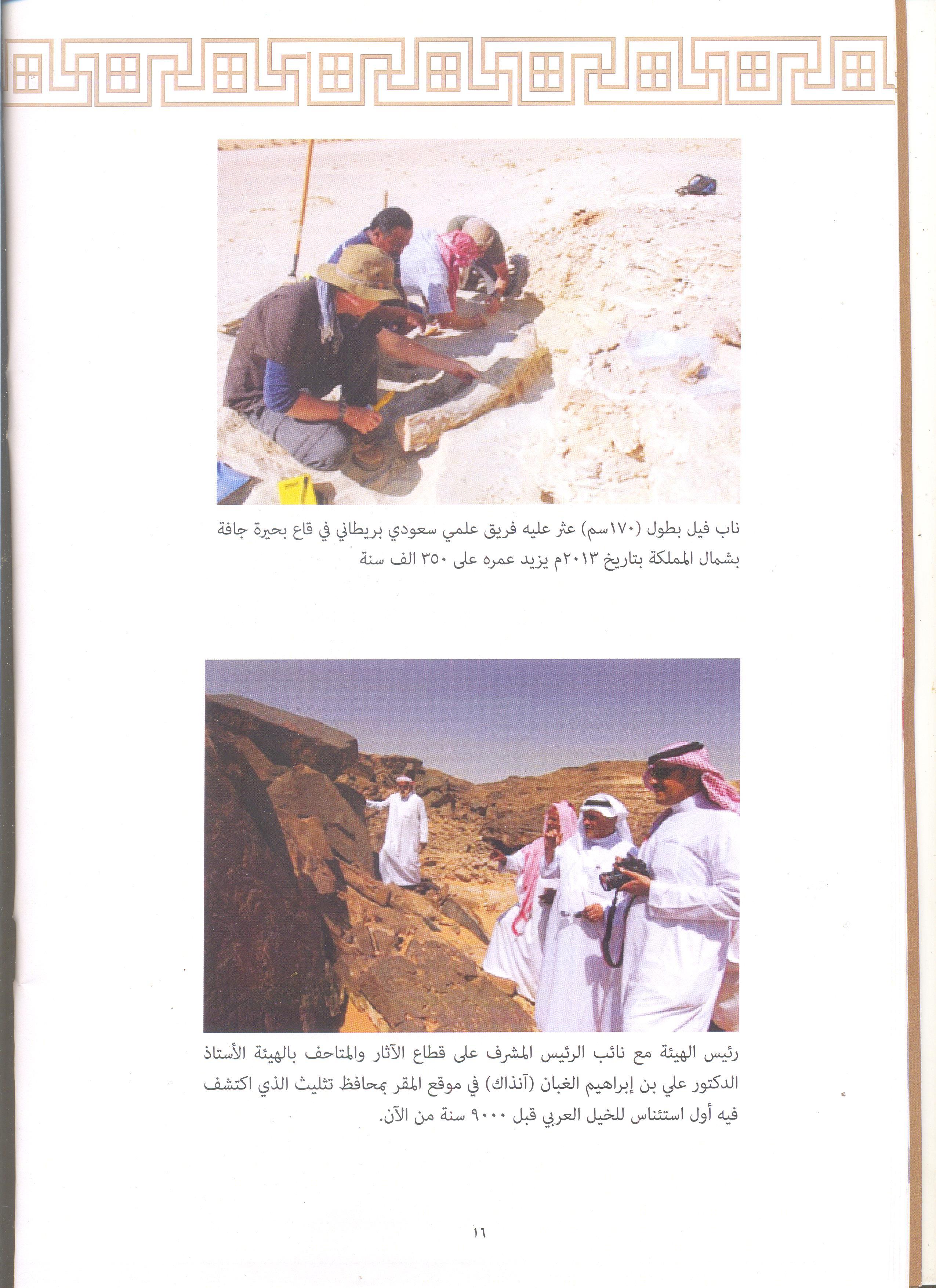 تاريخ السعودية