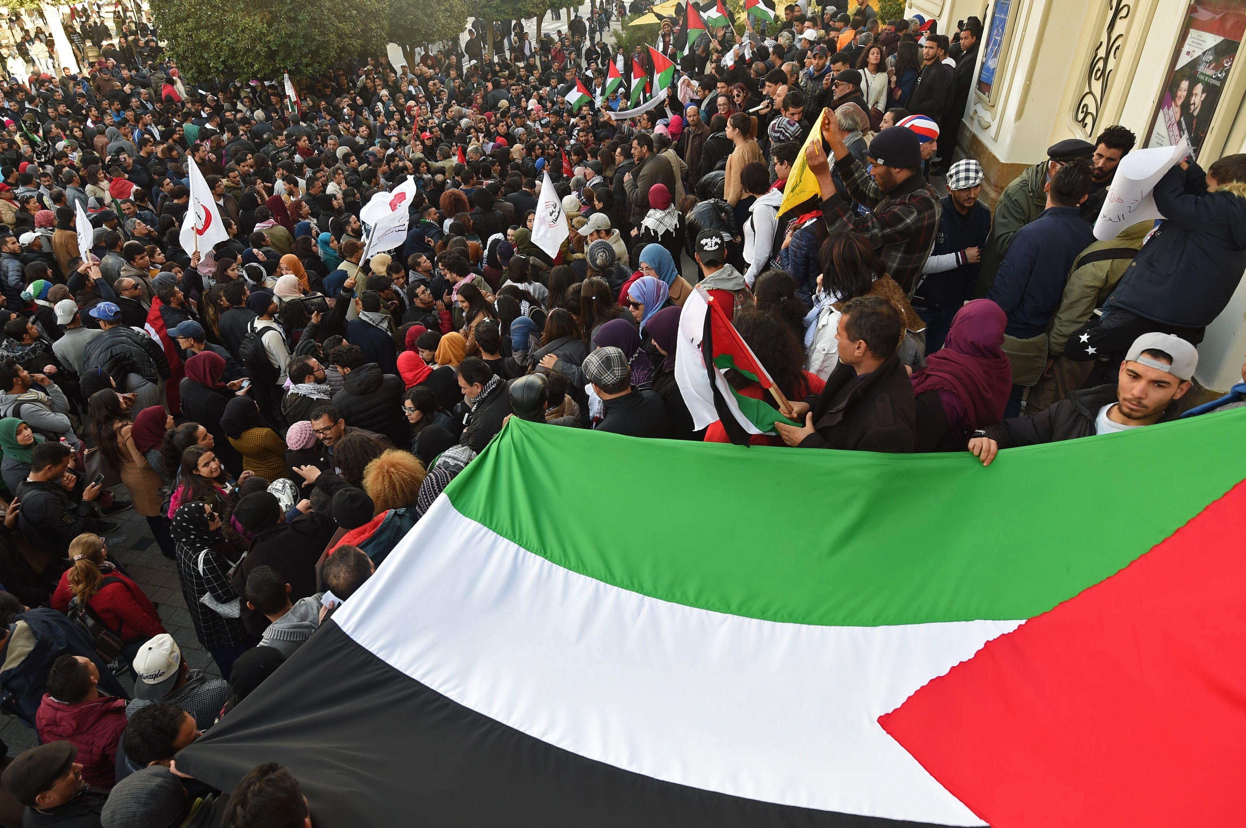 العلم الفلسطينى خلال التظاهرات التونسية