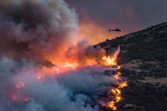 جهود مكافحة حرائق الغابات