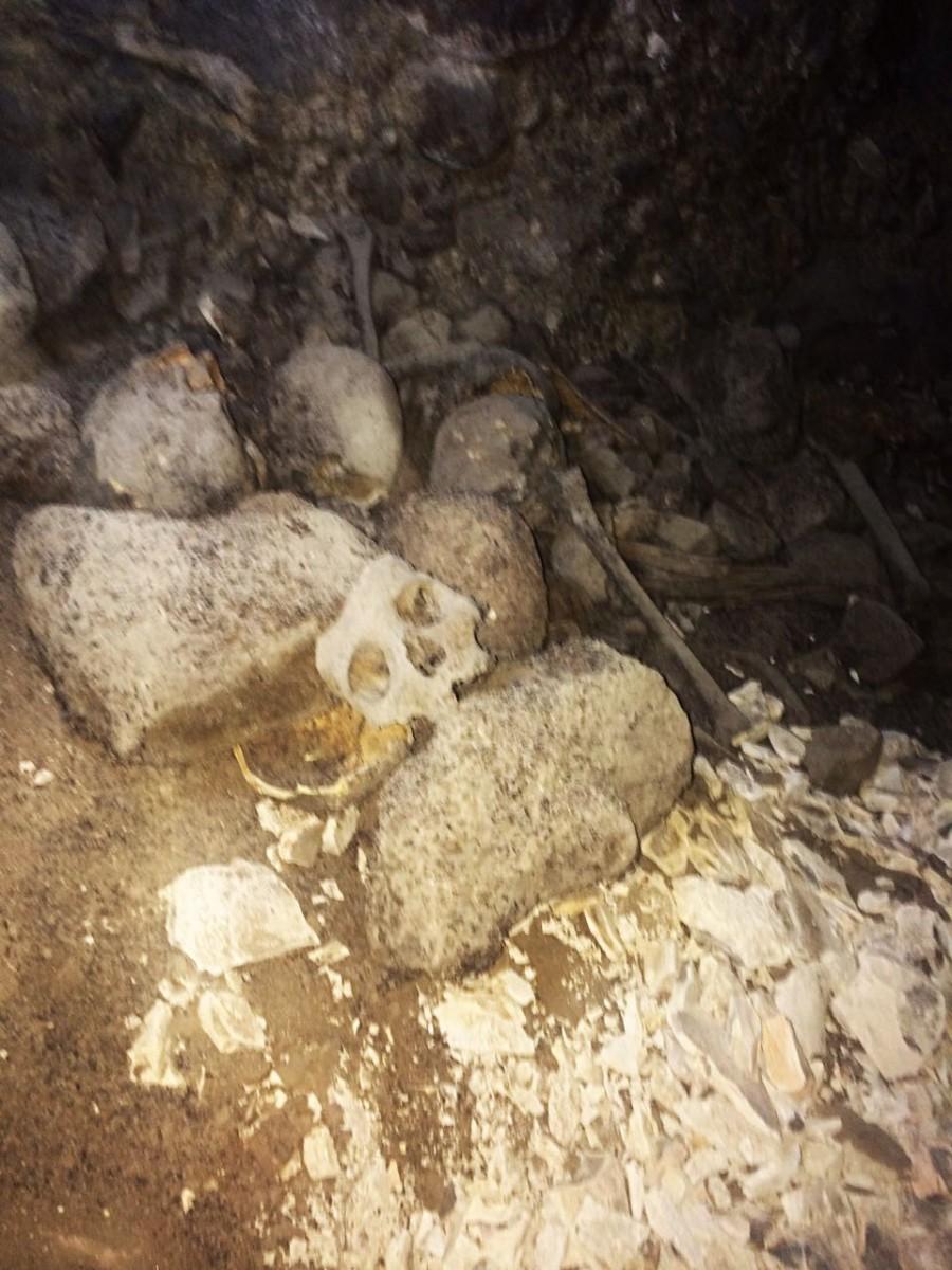 1- رجال الشرطة يكتشفون حفرة بجبل المعلا جنوب الأقصر بداخلها 4 غرف تضم هياكل عظمية وأواني فخارية