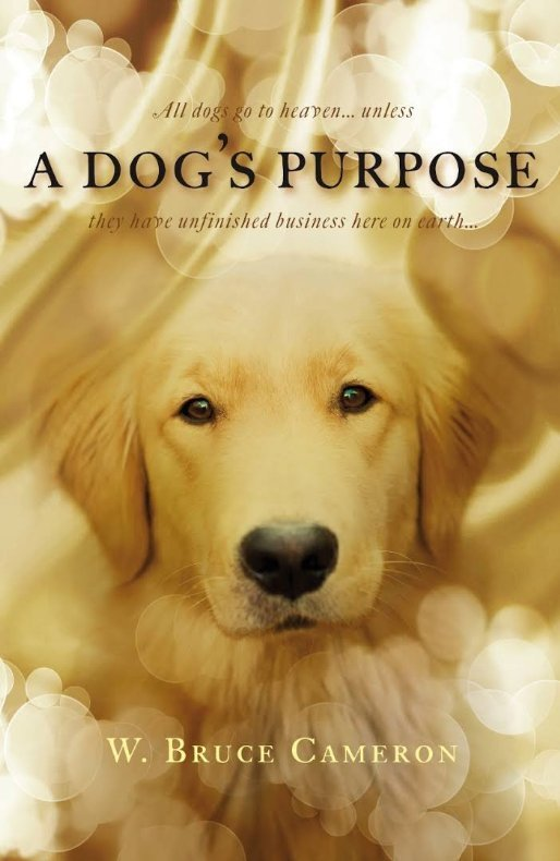 ADog Purpose 1