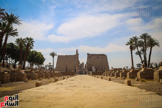 صورة-لمعبد-الأقصر