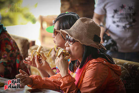السياح يتناولون الموز داخل الجزيرة