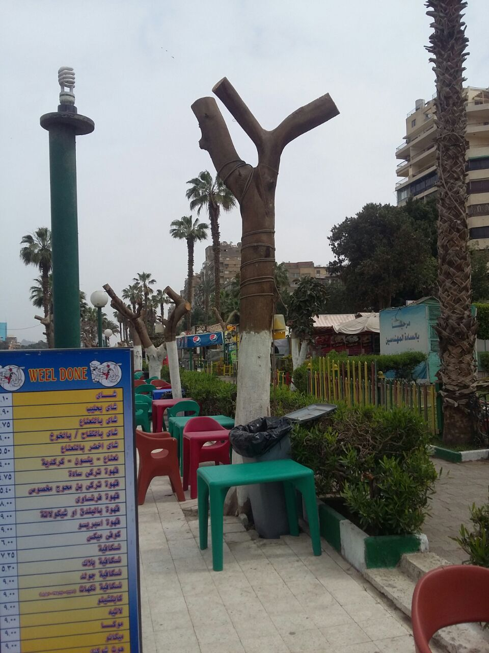 قطع جميع اشجار المنطقة المطله على النيل