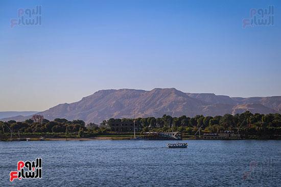 جمال الطبيعة على كورنيش النيل