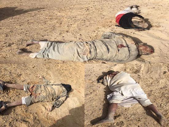القوات المسلحة تدمر مخازن اسلحة  (7)