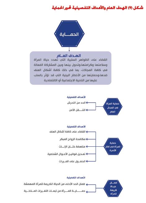 الهدف العام والأهداف التفصيلية لمحور الحماية
