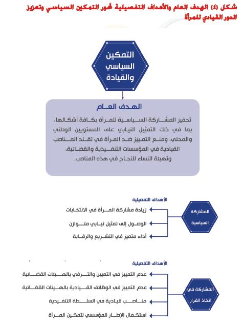 4- الهدف العام والأهداف التفصيلية لمحور التمكين السياسى