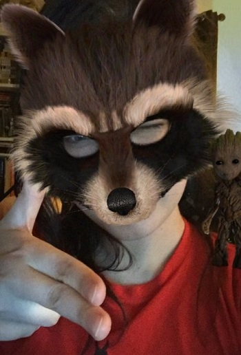 Rocket Raccoon Mask