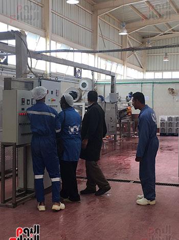 مصنع تمور سيوة بعد إعادة تأهيله