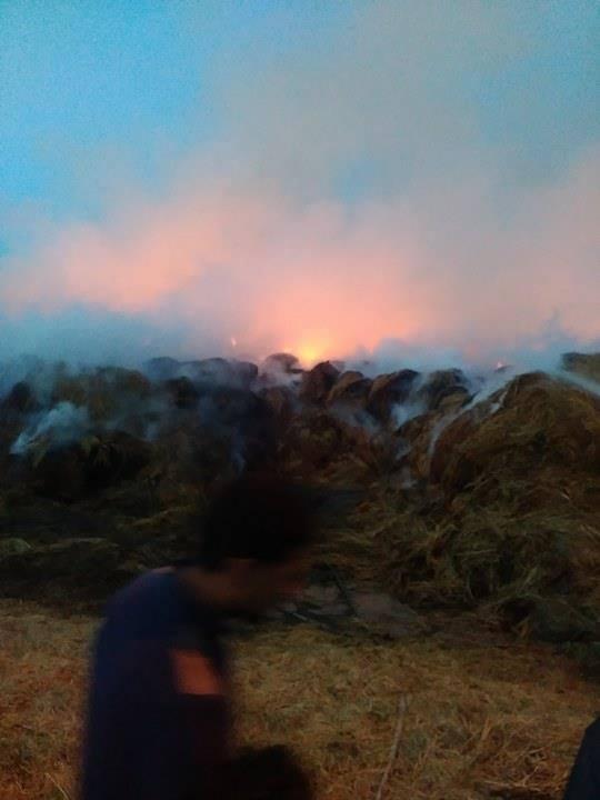 ازدياد اشتعال النيران فى القش بفوه