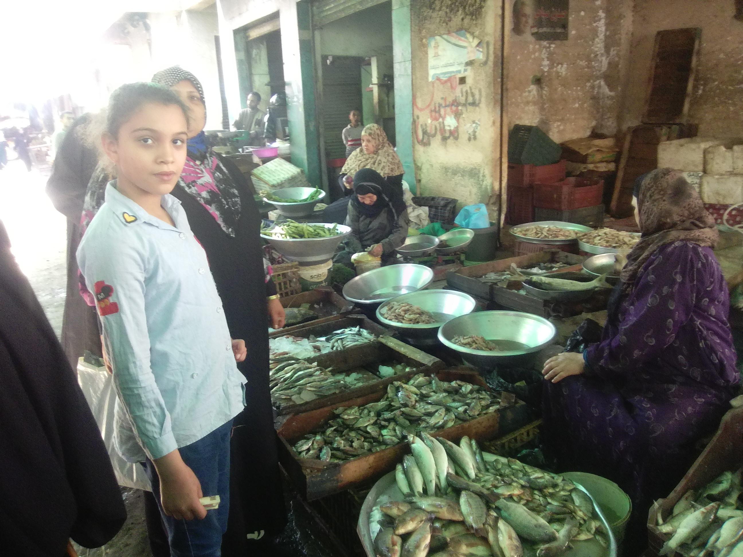 إقبال قليل على شراء الأسماك بكفر الشيخ